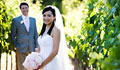 Sonoma Destination Wedding