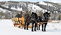 Montana Ranch Winter Packages