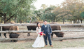 A Texas Hill Country Wedding