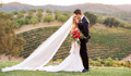 Wine Country Wedding Inspiration