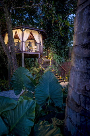 Marigot Bay Resort Tree House