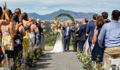 A Sonoma Wine Country Wedding